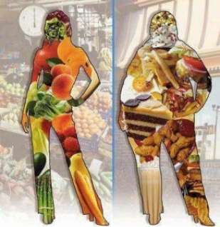 heavy-body-with-fast-food-in-it-skinny-body-with-plant-food.jpg